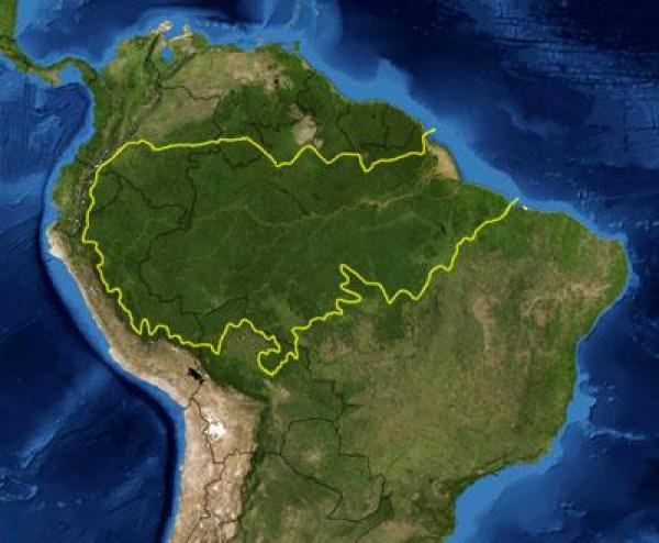 Presença militar estadunidense na amazônia brasileira é crime de alta traição